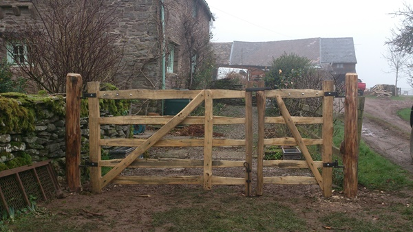 A pair of rustic cleft Chestnut mordiford gates with blacksmith forged furniture