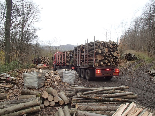 More timber felled, extracted and being delivered to the yard