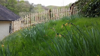 Cleft Chestnut Picket fencing works well on slopes in Herefordshire