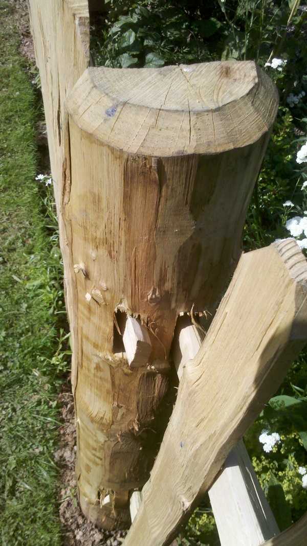 Detail of the posts used for mortised frame picket fencing and estate grade post and rail
