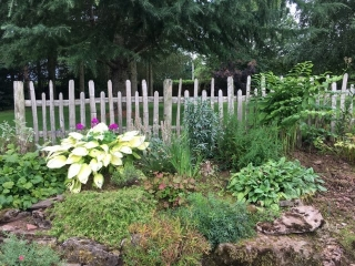 Picket fencing looks great in a pretty cottage garden