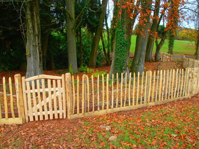 rustic Cleft Chestnut paling with Harvest gate