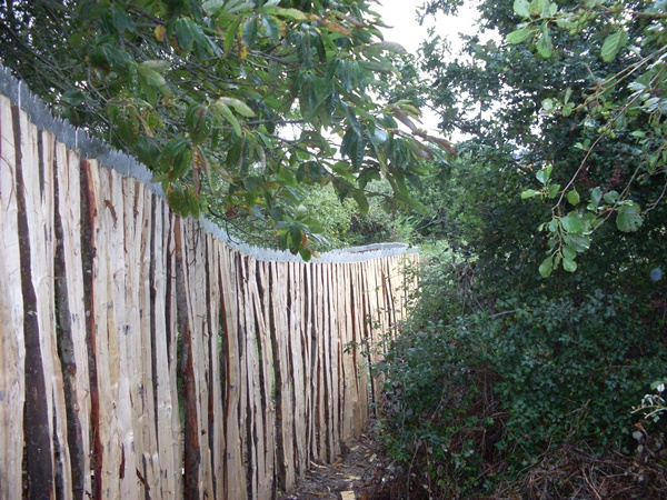 Bespoke cleft Chestnut palisade fencing with metal trim