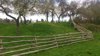 Free standing fence - This cleft Chestnut fence is holding sheep on a hill fort where digging is prohibited