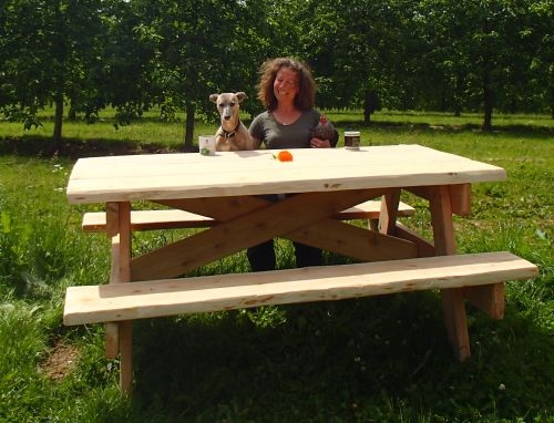 Chestnut  picnic table
