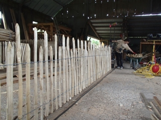 Rustic cleft chestnut fence
