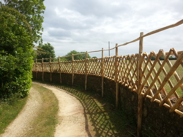 Cleft Chestnut diamond trellis with top rail to deter deer
